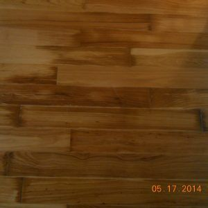 Water Damaged Hardwood Floors Mold Hardwood Floors Flooring Floor Molding