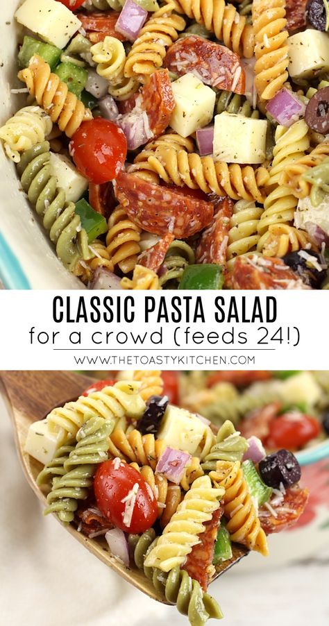 Classic pasta salad for a crowd by the toasty kitchen pastasalad picnic sidedish summer partyfood sidedishrecipe recipe homemade vinaigrettedressing pasta cheese pepperoni chicken fettuccine alfredo Summer Pasta Salad, Summer Salads, Simple Pasta Salad, Pasta Salad Classic, Salad With Pasta, Easy Cold Pasta Salad, Healthy Pasta Salad, Best Pasta Salad, Easy Pasta Salad Recipe