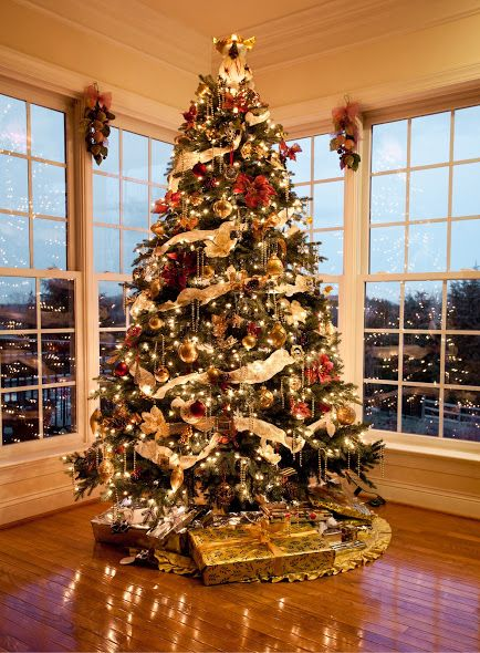 Professionally Decorated Christmas Trees | how to select a christmas tree  choosing a perfect tree for decorating ... | Xmas | Pinterest | Decorated  ...