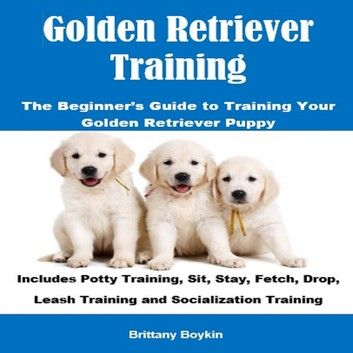 Golden Retriever Training The Beginner S Guide To Training