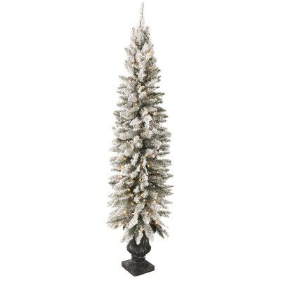 The Holiday Aisle Flocked Potted 6 Green Pine Tree Artificial Christmas Tree With 150 Clear Ul Lights Flocked Christmas Trees Potted Christmas Trees Flocked Artificial Christmas Trees
