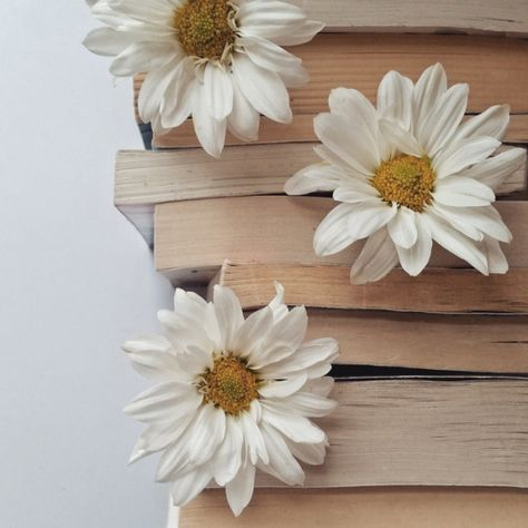 Imagem de book, flowers, and daisy Hipster Vintage, Style Hipster, Flatlay Instagram, Alaska Young, Daisy, Looking For Alaska, Brown Aesthetic, Flower Aesthetic, Hogwarts Houses