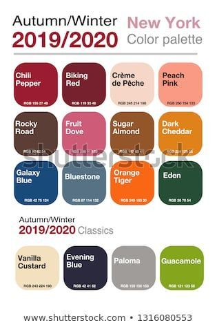 Palette of trendy colors with named colo. Palette of trendy colors with named color swatches.