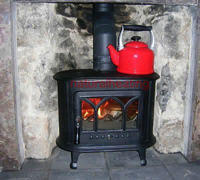 Ladybird Wood Burning Stove Multi Fuel Stove Wood Fuel Wood Burning Stove