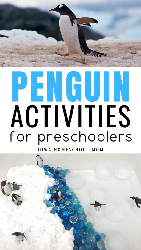 Penguin Activities for Preschoolers - Iowa Homeschool Mom Preschool Learning Activities, Preschool Science, Infant Activities, January Preschool Themes, Iowa, Science Penguin, National Geographic Kids, Preschool Lesson Plans, Animal Fun