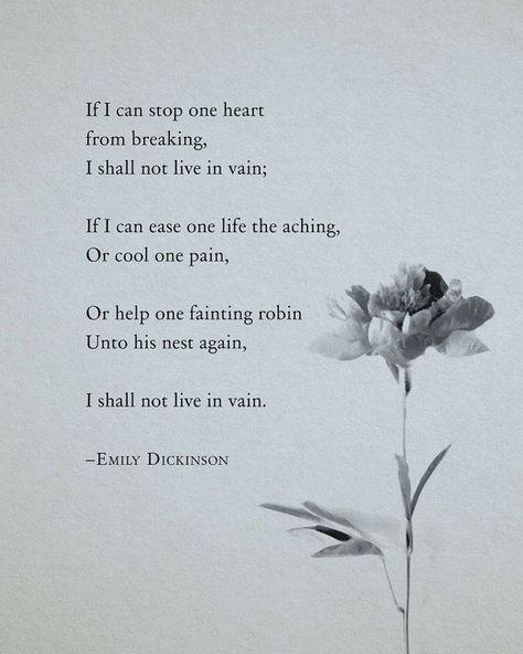 Emily Dickinson #literature #poetry #whattoread #reading #literaturequotes #poetryquotes #wisdom #inspiration #lifequotes