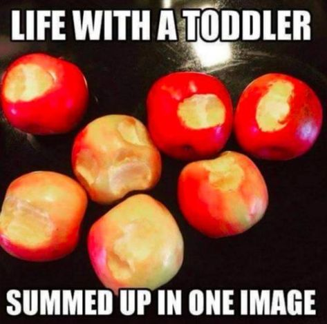 Who else can relate? ????????‍♀️ via Red Tricycle | parenting humor toddler sons hilarious #Memes #Relatable #Mom #MomMemes #Funny #Humor #Hilarious #Toddler #Cute #Humor #Meme