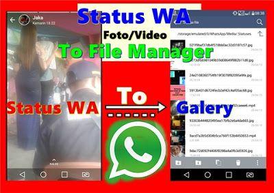 Cara Menyimpan Video Dan Foto Dari Status Whatsapp Langsung Ke Galeri Video Gambar Pesan