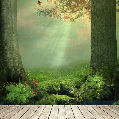 Details About Enchanted Forest Wall Mural Butterfly Tree Photo