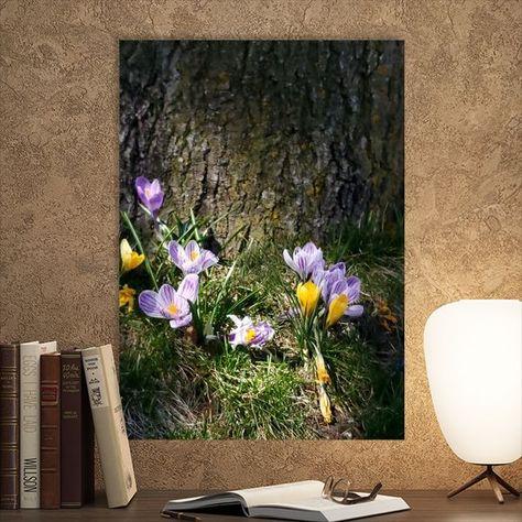 Flowers Photography Mobilephotography Nature Naturephotography Lightin