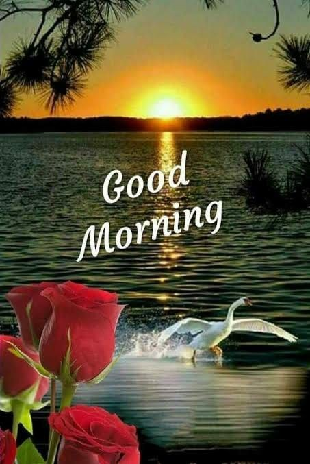 Pin By Rita Sciberras On 1 Good Morning Good Morning Images Morning Pictures Good Morning Sunrise