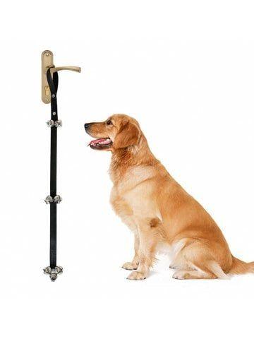 Pet Supplies Accessories Cheap Online Sale Dresslily Com Dog Supplies Pet Supplies Accessories Pet Supplies