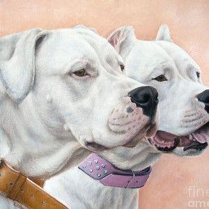 Dogo Argentino By Tobiasz Stefaniak In 2020 Dog Argentino Dog Art Dog Artist