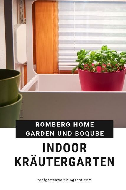 Pin On Indoor Herbs Garden
