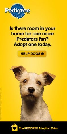 Related Image Psa Examples Animal Abuse Adoption Service Dogs