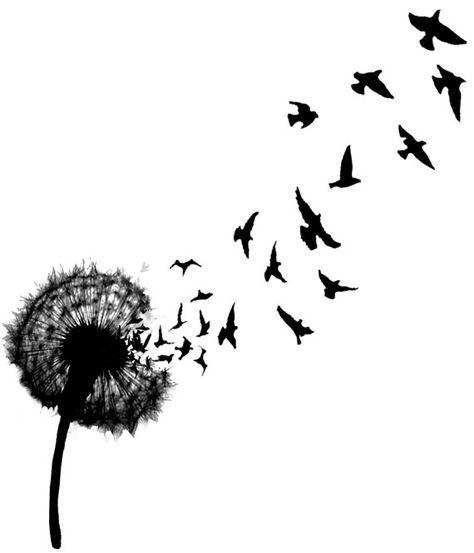 A beautiful dandelion shedding bird silhouettes