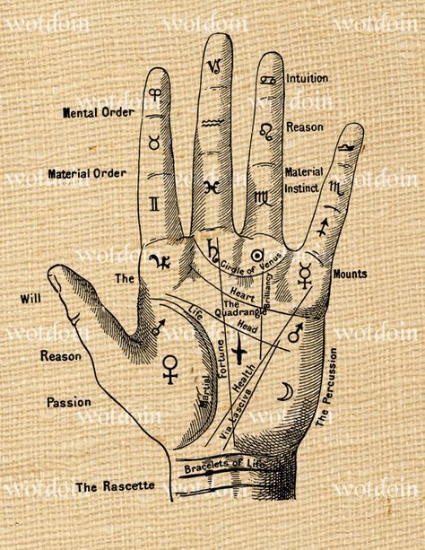 Fortune Teller Palmistry Hand Digital Image by debsvintageprints, $1.95