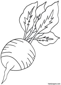 Printable Vegetable Radish Coloring Page Printable Coloring Pages For Kids Printable Vegetable Vegetable Coloring Pages Coloring Pages Fruit Coloring Pages