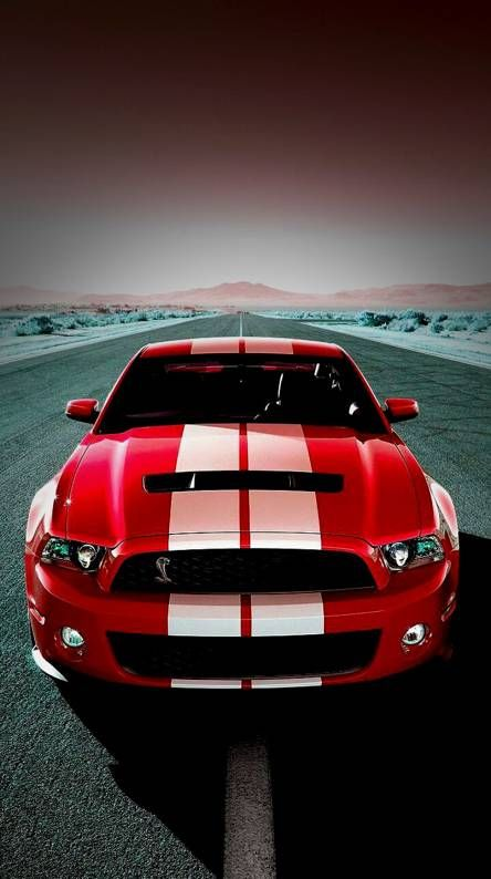 Luxury Car Wallpapers Mustang Shelby Shelby Gt500 Mustang