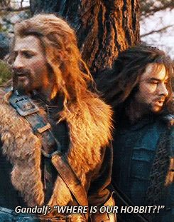 Fili and Kili (Gif)...I love that they really thought they were doing something!