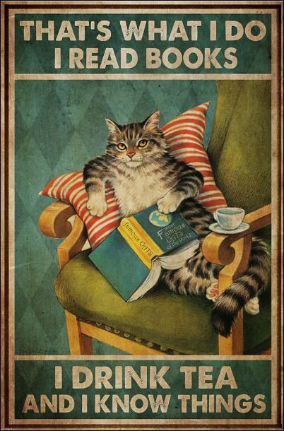 Cute Cats, Funny Cats, Funny Animals, Cute Animals, I Love Books, My Books, Books To Read, Crazy Cat Lady, Crazy Cats