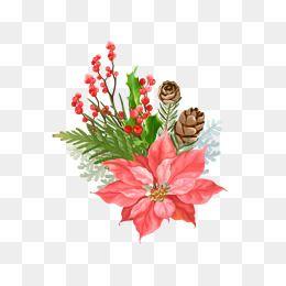 크리스마스 그림 크리스마스 소재 크리스마스 소재 라이브러리 크리스마스 그래프 크리스마스 꽃 솔방울 식물 크리스마스 크리스마스 꽃 크리스마스 그림