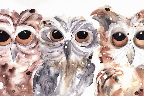 Items similar to Owl Fine Art Print, Owl Art, Three Owls Art Print on Etsy