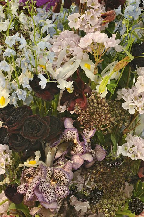 wild flowers at -jill sander
