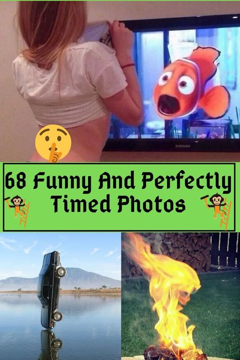Hilarious Memes, Funny Relatable Memes, Funny Humor, Funny Images, Funny Photos, Random Stuff, Funny Stuff, Perfectly Timed Photos, Funny Pins