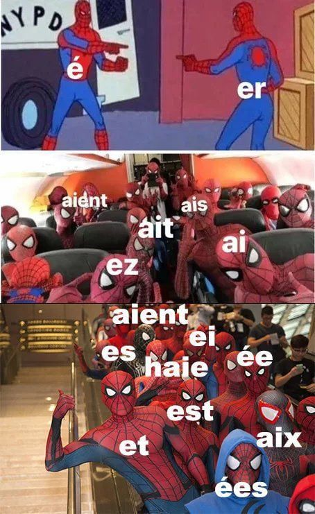 The Beauty Of The French Language Language Jokes French Meme Funny French