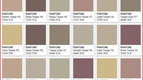 Resultat De Recherche D Images Pour Brown Pantone Couleur