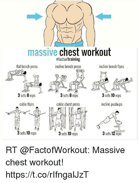 Image Result For Factsoftraining Chest Workout Chest Workouts Workout Plan Gym