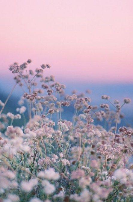 Trendy photography tumblr wallpaper colour 54+ Ideas #photography