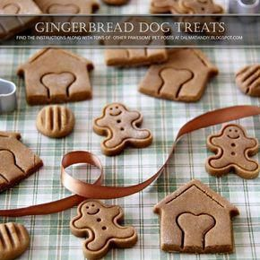 Rather Of Using White Flour In Your Canine Cookies Or Any Other