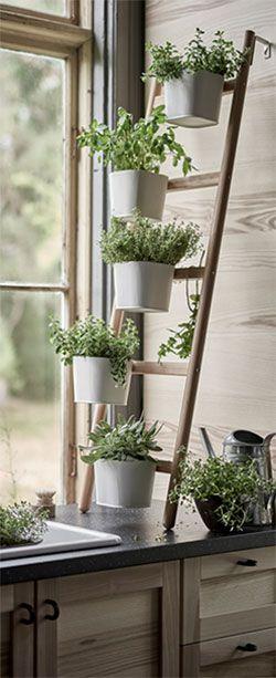 Mobel Einrichtungsideen Fur Dein Zuhause Kuchenpflanzen Wohnung Kuche Dekoration Pflanzenregale
