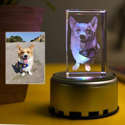 Custom Led Art Portrait Lamp In 2020 Photo Lamp Crystal Lamp Engraved Crystal