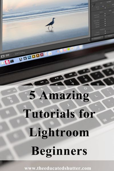 New to Lightroom? Need a little help getting the hang of it? Don't worry! I didn't know how to use Lightroom at one point too! Here are 5 Lightroom Tutorials that really helped my photography and my workflow. Check them out!   The Educated Shutter