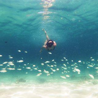 Mergulho Na Ilha Do Farol Arraial Do Cabo Brasil Espere