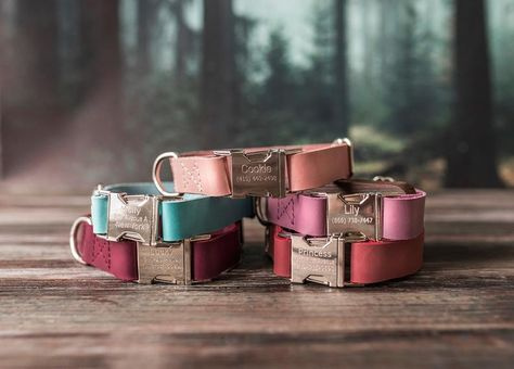 Some dog is about to become the most stylish in the neighbourhood. Our personalized leather dog collars are even better than a dog house. It's an essential part of puppies paradise. Leather Cat Collars, Cool Dog Collars, Custom Dog Collars, Personalized Cat Collars, Personalized Gifts, Dog Accesories, Leather Accessories, Pet Accessories, Dog Collar With Name