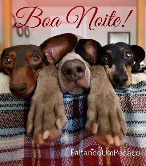 Boanoite Gentelinda