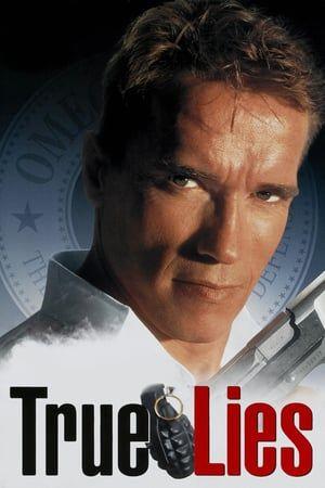 True Lies 1994 Hindi Dubbed Movie Watch Online Free True Lies Movie True Lies Full Movies Online Free