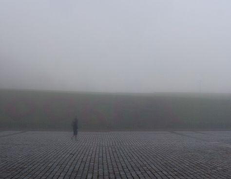 Fog 2012