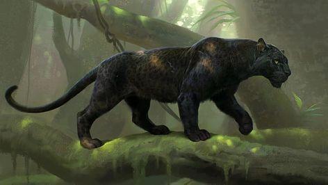 Black Panther Animal Wallpaper Hd Inspirational Hd Wallpaper Black Panther Digital Art Animal In 2020 Panther Pictures Big Cats Art Jaguar Animal