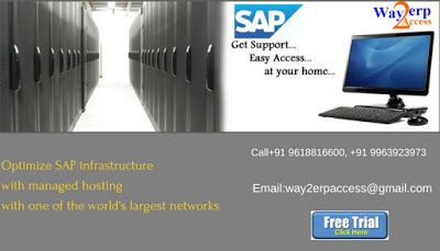 SAP Server Access: SAP Remote Server Access | SAP Live Access | SAP