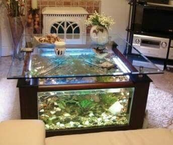 Pin By Patricia Randrianarisoa On Aquarium Aquarium Coffee Table Coffee Table Design Fish Tank Coffee Table