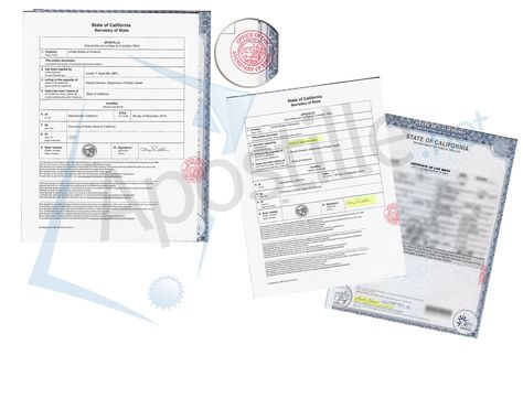 complete apostille of a live birth certificate, County of San Diego - copy alameda county records birth certificate