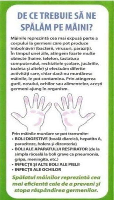 Bolile mâinilor murdare