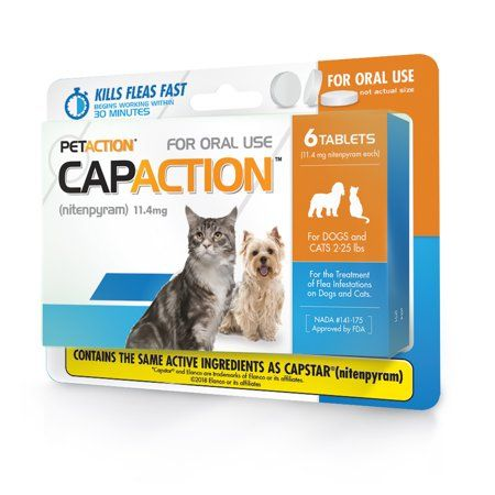 Pets For The Love Of Animals Cats Dog Cots Fleas
