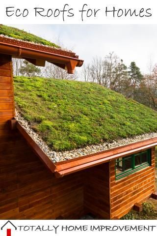 Let S Take A Look At Eco Roofs For Homes Eco Roof Green Roof Green Roof House
