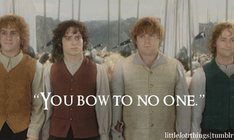 """You bow to no one."" I love how happy pip and merry are about it, while Sam and frodo don't really know what to think"